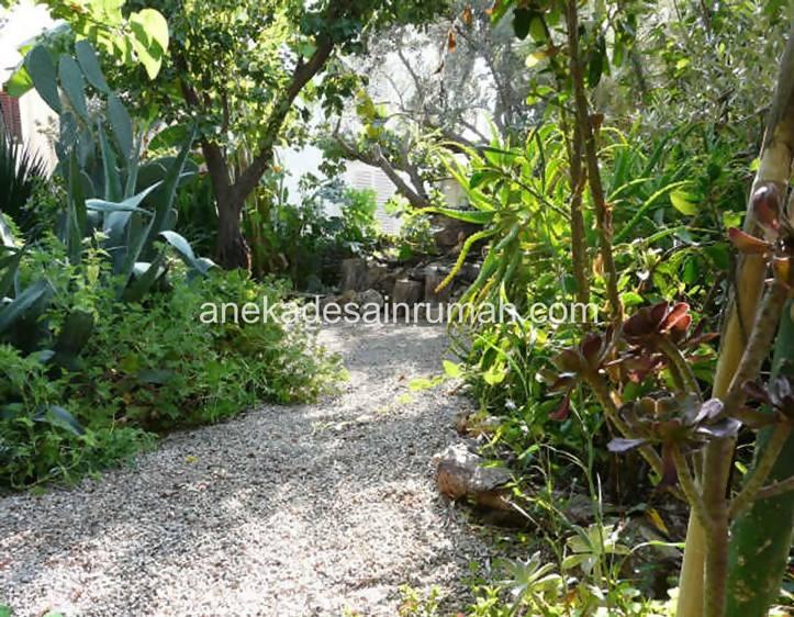 foto desain taman rumah minimalis tanpa air (5)