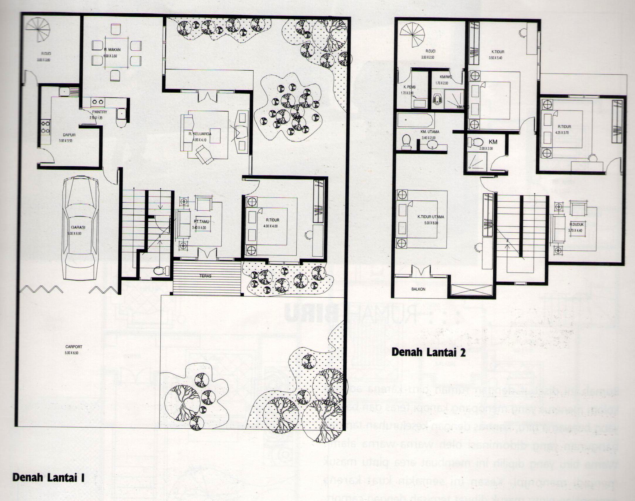 101 Denah Rumah Minimalis Jepang