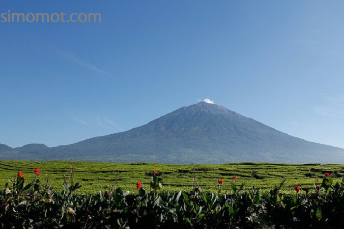 Duh! 18 Gunung di Indonesia ini sedang menggeliat \u2013 SIMOMOT