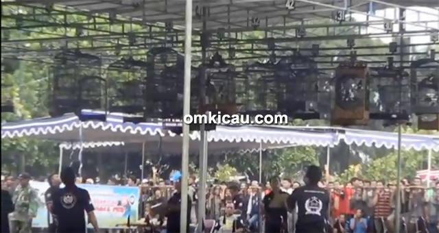 Festival Jawara Kicau-kelas kacer